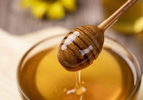 honey-4770245_1280-1024x682